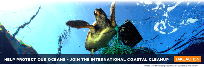 Make a New Years Resolution:  Help Keep Trash Out of Our Oceans