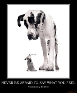 never-be-afraid-to-say-what-you-feel-never-be-afraid-to-say-demotivational-poster-1232488528